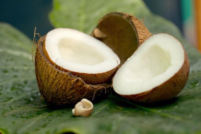 India - Goa / brigada - kokos_vylsedok2