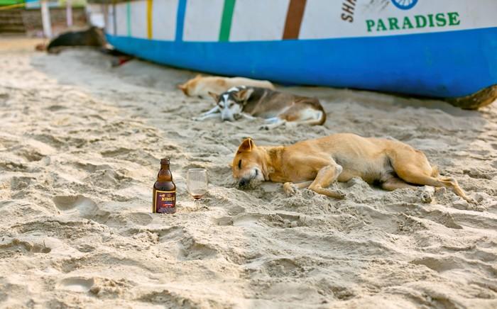 Pes v Goa, India