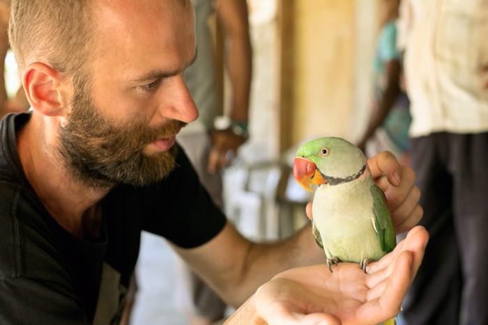 U Nayana - papagáj Ara u nevesty