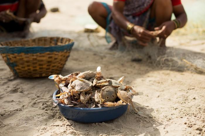 Palolem, Goa. Kraby sa majú poprdeli.